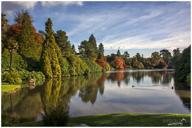 Autumnal Reflections at Sheffield Park