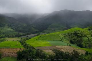 Green valley | by Pond Pisut