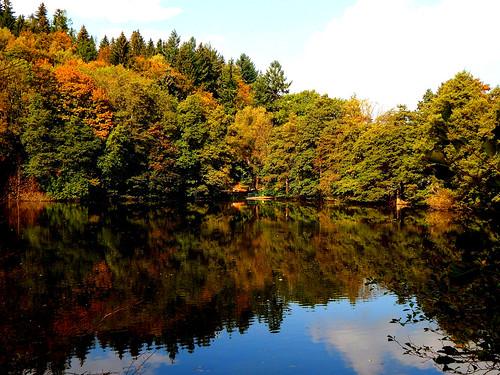 lake see ilmenau thuringia thüringen thuringianforest thüringerwald caledoniafan autumn herbst wald forest landscape landschaft nature natur nikon nikoncoolpixl820