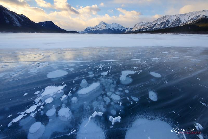 lake alberta, alberta canada lake, abraham lake frozen bubbles,