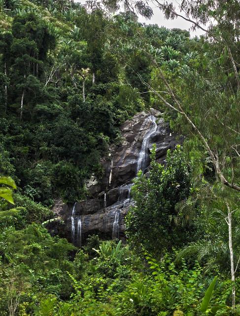 Madagascar5 - 106
