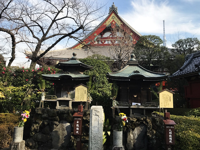 Sensoji Temple from the Garden
