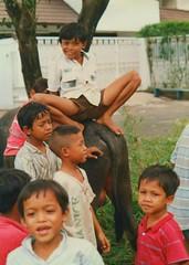 Boys and Buffalo, Jakarta