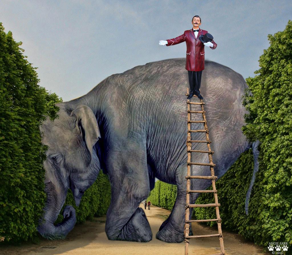 Jumbo , Biggest Elephant In The World...