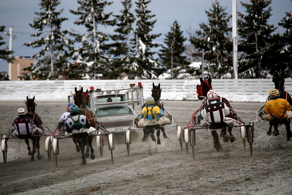 Red Shores Racing