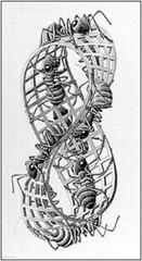 M.C. Escher? - mobius strip