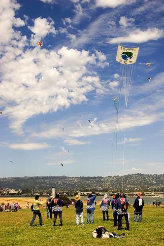 bringing down a hamamatsu kite | by romsrini