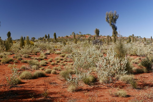 The Red Centre | by Bill Hails