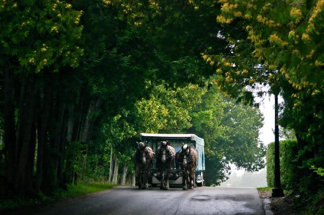 Michigan - A ride