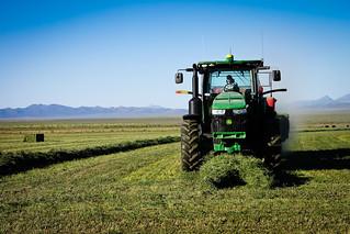 John Deere Baling Alfalfa | by odonata98 (Kimberly Reinhart)