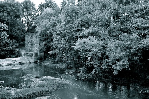 river landscape blackwhite tennessee nationalregisterofhistoricplaces nrhp harpethriver davidsoncounty harpethriverstatepark nikond5000 skyemarthaler newsroomsmill