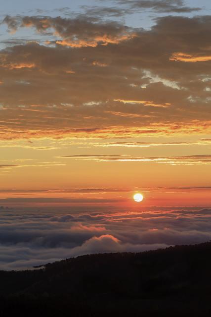 Sun Rising in an Ocean of Fog