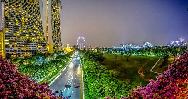 Marina Bay Sands & Singapore Flyer-3