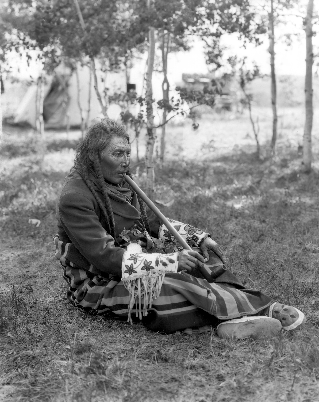 Big Belly, Tsuu T'ina chief