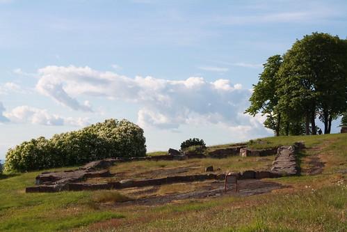 Slottsfjellet (102)