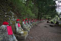 Jizo statues along Kanmangafuchi Abyss