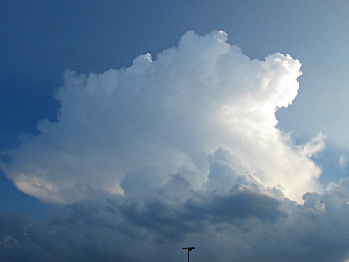 clouds thunderstorms cumulonimbusclouds walmart winchester ky kentucky sunset twilight dusk summerearlyfall cloudjunkie beautifulclouds bigclouds bluehue cloudsstormssunsetssunrises csssthunderheadsonly csssuskentuckythunderstorms cssstherebeastormabrewin