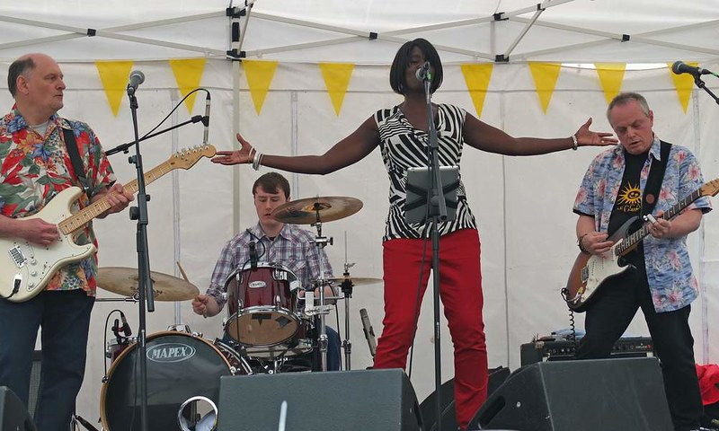 contagious-vibes-at-romseys-beggars-fair-2012_8215880637_o