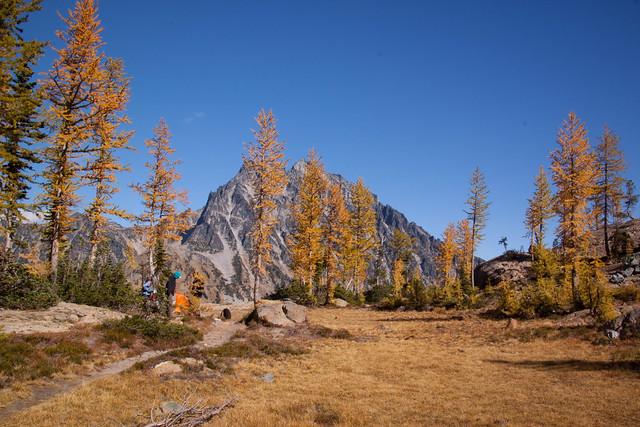 Trail No. 1390
