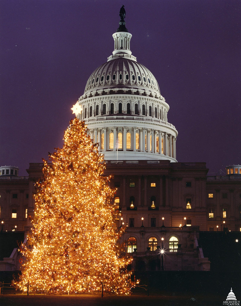 Capitol Christmas Tree.1997 U S Capitol Christmas Tree The 1997 Tree Was A 63 Fo