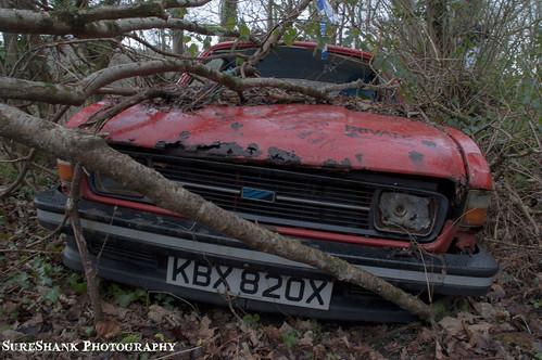 Car Graveyard   by kurtroberts21
