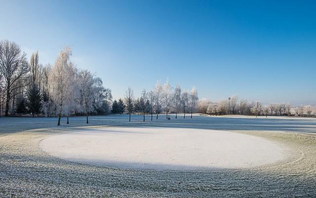 frosty morning (01)