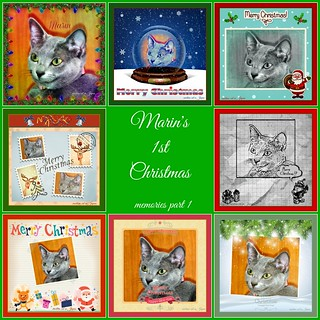 Marin's 1st Christmas ~ memories part 1