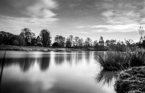 robin swan sunrise kenilworth castle countryside long exposure landscape lake pond bw bird motion blur