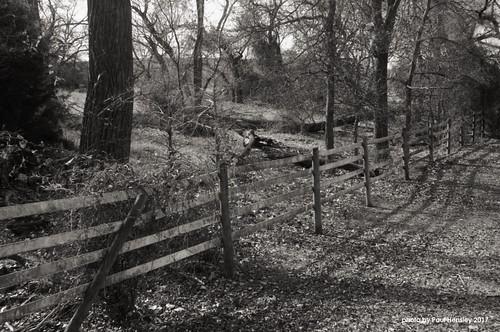 fence image2828