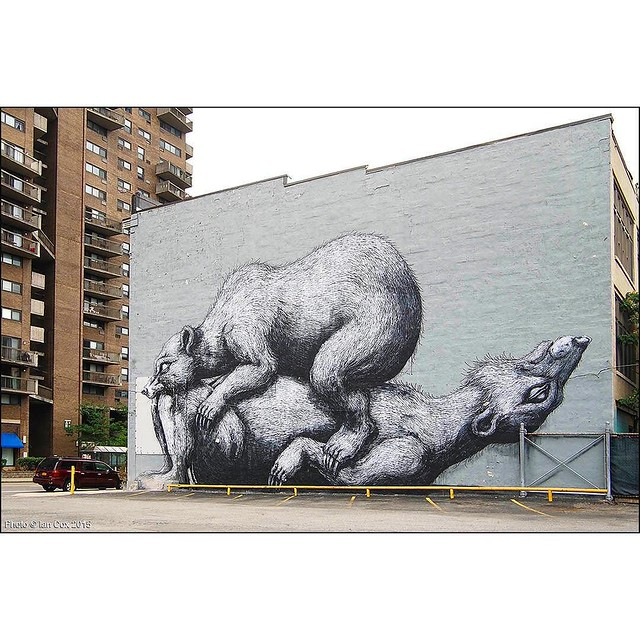 #ROA IN #Rochester #NewYork for @walltherapyny. This huge wall created some colourful conversation with the locals whilst I was shooting. #WallKandy #walltherapy #art #streetart #graffiti #painting #fb #f #t #mural #muralart