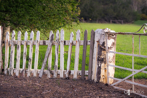 Picket fence and gate | by Greg-Johnston