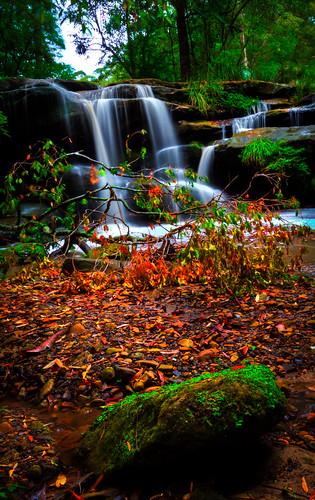 waterfall balakafalls carlingford northrocks newsouthwales sydney australia huntscreekfalls moss falls simamimages