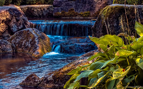 germany bayern deutschland bavaria augsburg reise japanischergarten schwaben botanischergarten