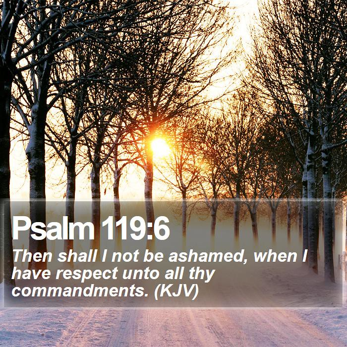 Image result for psalm 119:6 kjv