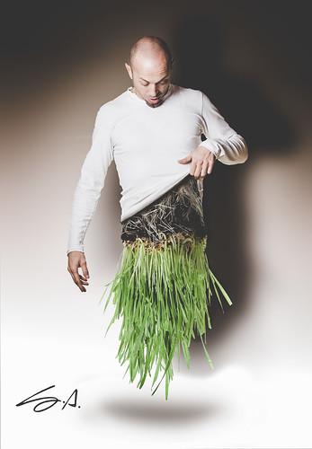 mallo in erba