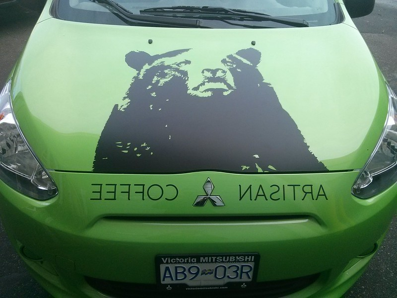 Black bear hood vehicle graphics