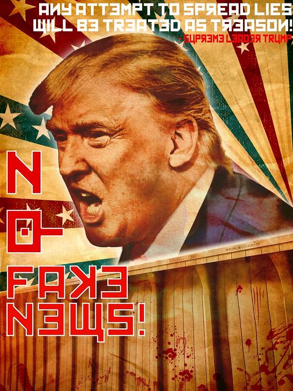 """Trump's America Propaganda Poster: """"NO!"""""""