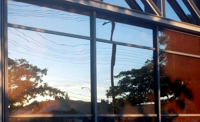 Reflexion in a glass building at sunrise
