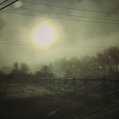 sunlight nature sunshine mobile fog fence landscape outdoors eerie spooky iphone iphonegraphy