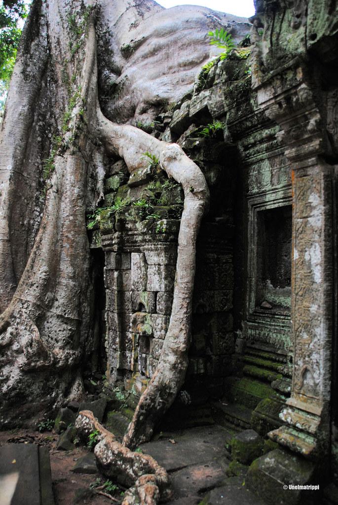 Angkorin temppelit, Ta Prohm