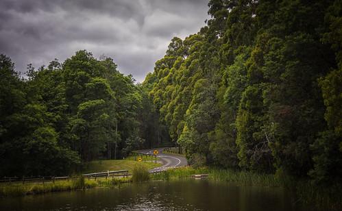 melbourne australia victoria dandenong emeraldlake green road nikond810 googlenik puffingbillyrailway