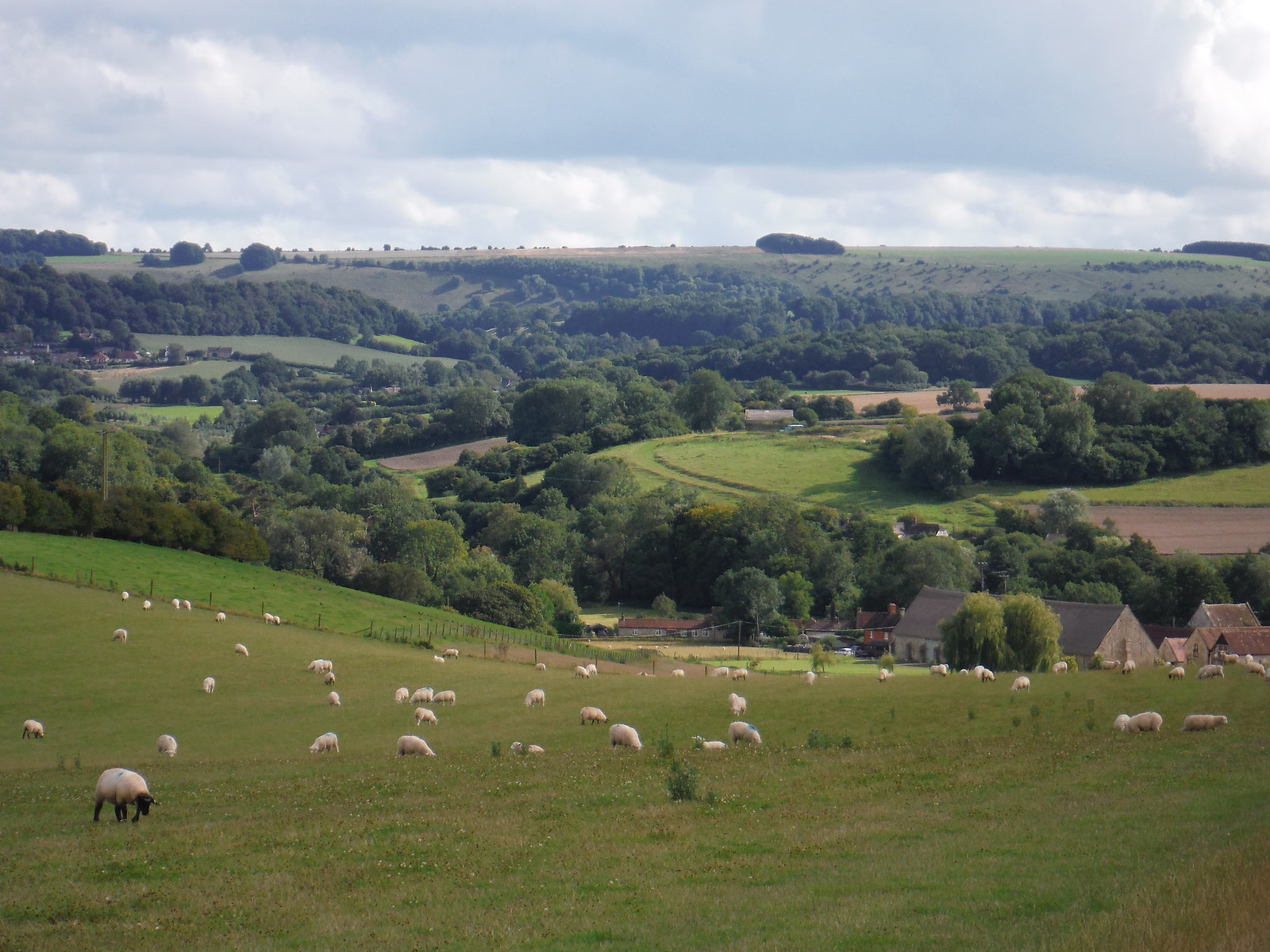 Descent into the Nadder Valley (with Place Farm) SWC Walk 248 Tisbury Circular via Hindon