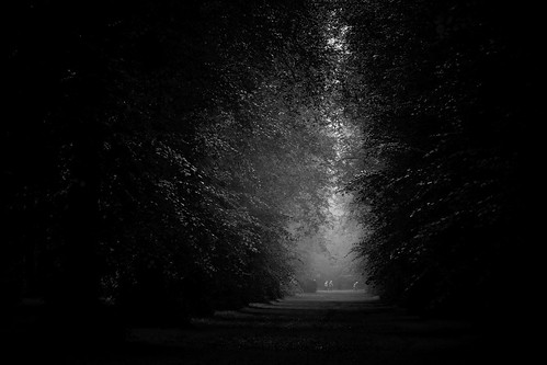 Lime Avenue bw | by chrisotruro
