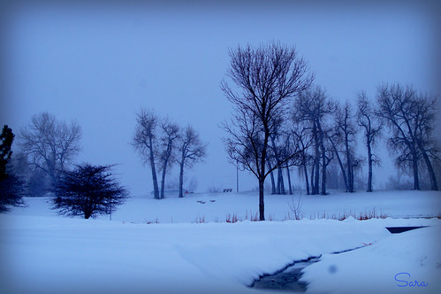 winter landscape colorado quiet denver serene