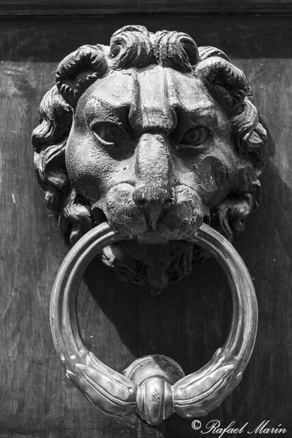 Lion door knocker.
