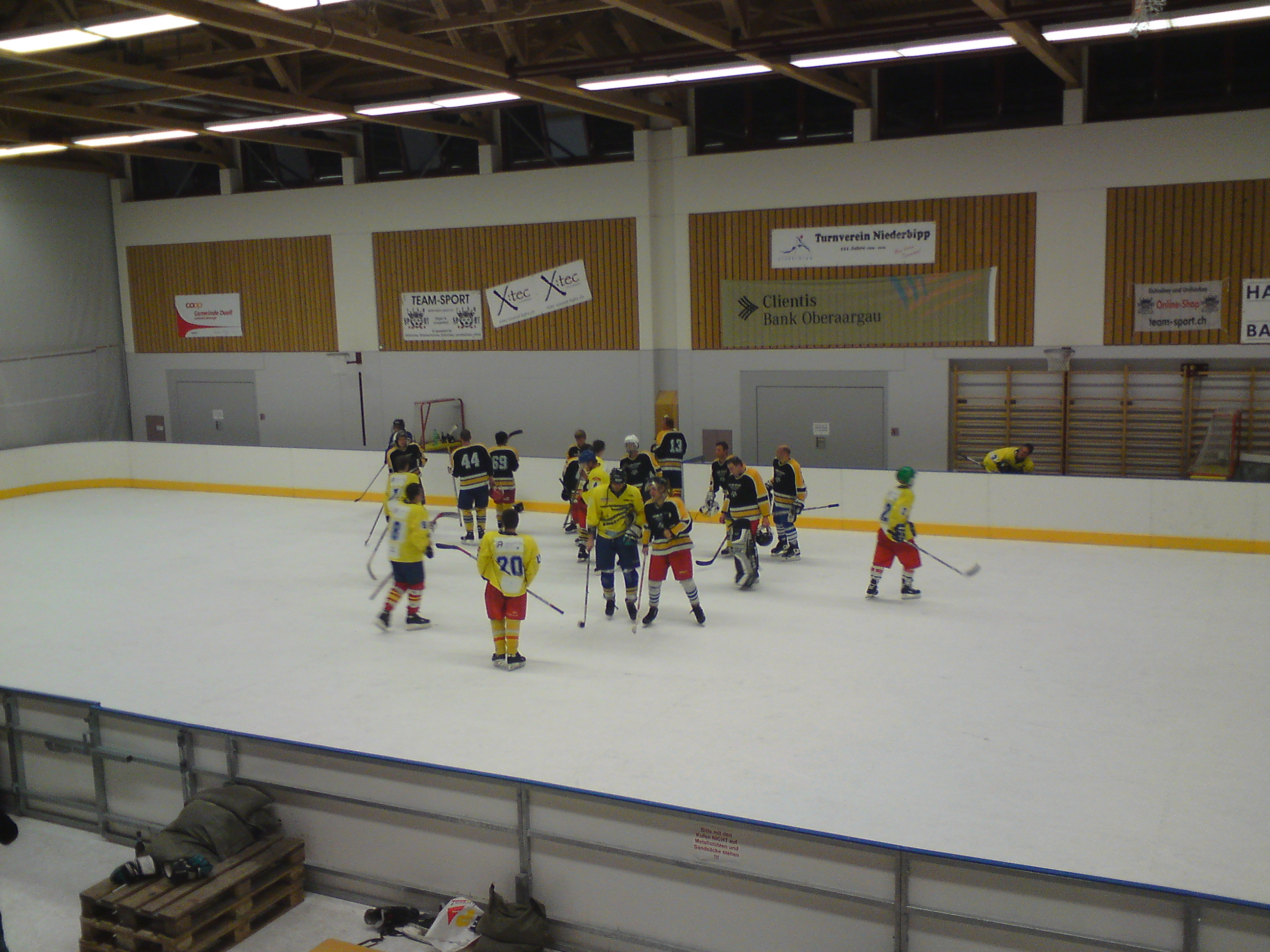 SynthIce Arena 2010