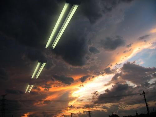 light sunset geotagged tokyo grow musabi kodaira のんびり geolat3572707 geolon139445949