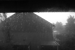 rain bw