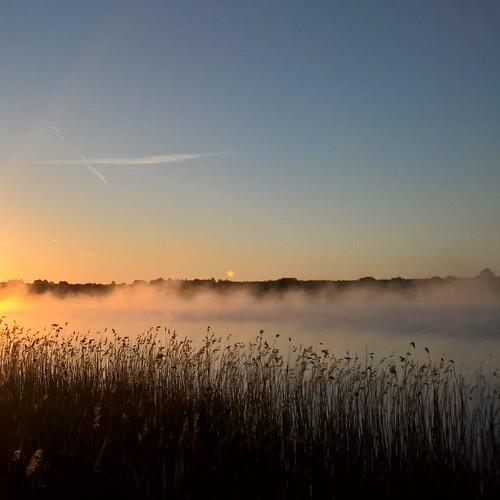 lake fog sunrise