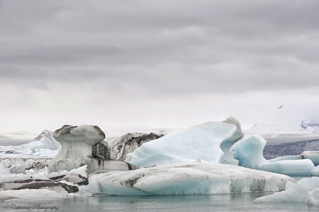 Stunning Icebergs, Iceland